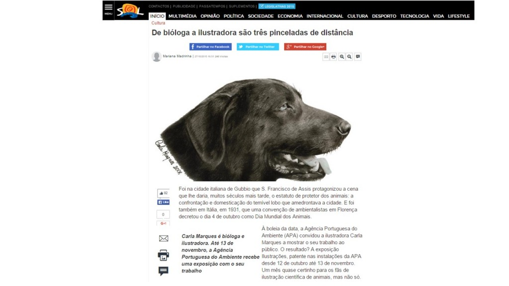 Reportagem_Jornal_Sol